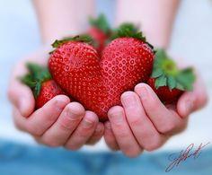 Coeur à la fraise Hotel le moulin de la brevette arbigny